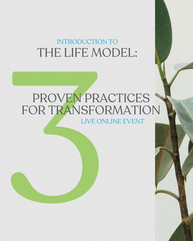 information about a spiritual transformation seminar with a picture of a plant